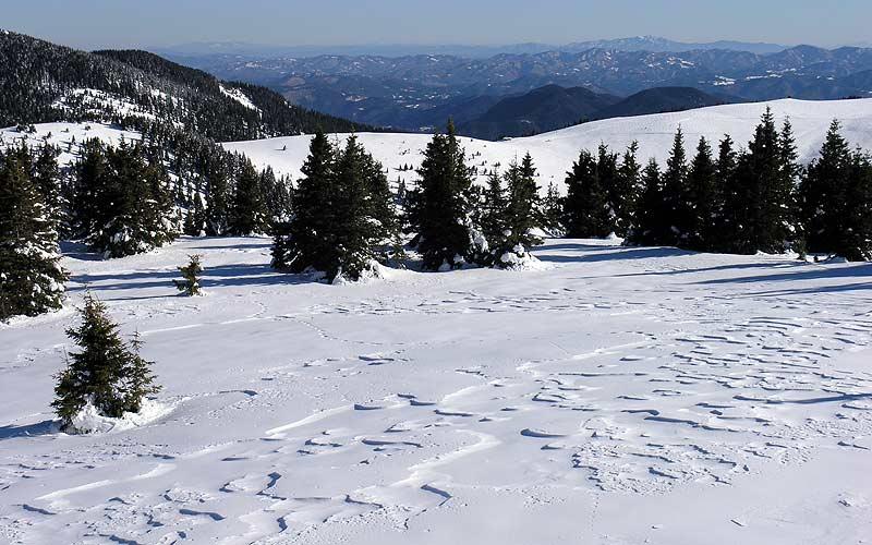 Snowshoeing in Vitosha and Rila Mountains 2 - Walking Bulgaria