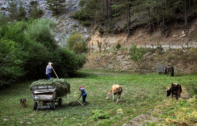 Pirin-Rodopi Mountain Trek 21 - Walking Bulgaria
