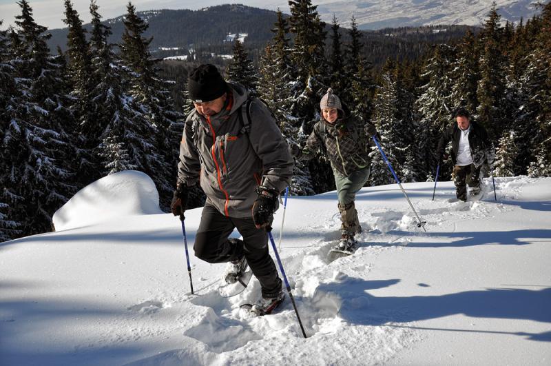 Snowshoeing in Vitosha and Rila Mountains 17 - Walking Bulgaria