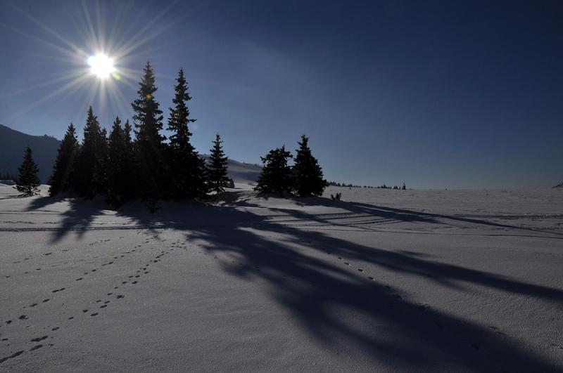 Snowshoeing in Vitosha and Rila Mountains 11 - Walking Bulgaria